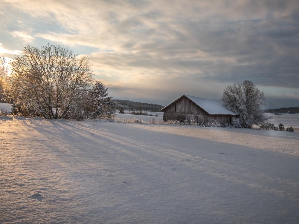 17-januari-2016britt-vienonen-dsc_5477